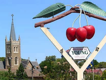 YOUNG CHERRY FESTIVAL TOUR