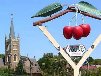 YOUNG CHERRY FESTIVAL TOUR – ON TOUR
