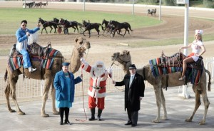 CHRISTMAS IN JULY LUNCHEON, CAMEL RACE DAY